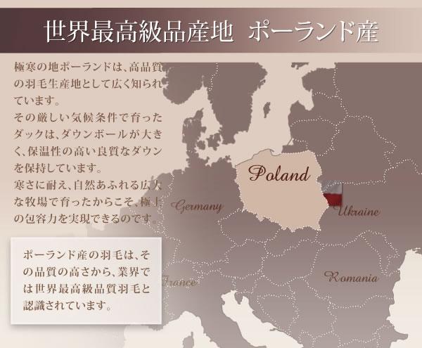 ポーランド産ホワイトダック90% ロイヤルゴールドラベル羽毛布団8点セット【Fiji】フィジー プレミアム敷布団タイプの激安通販